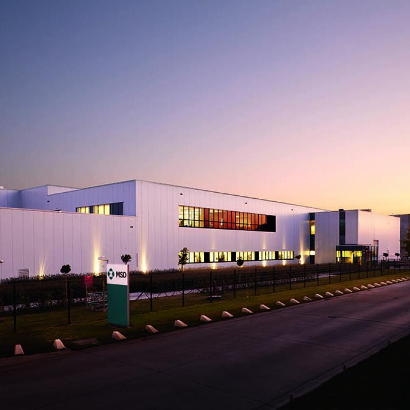 MSD production plant in Heist-op-den-berg (Flanders, Belgium)