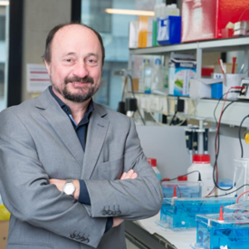 Together with 3 other scientists, Bart De Strooper (KU Leuven) has won the renowned Brain Prize for his work on Alzheimer's disease.