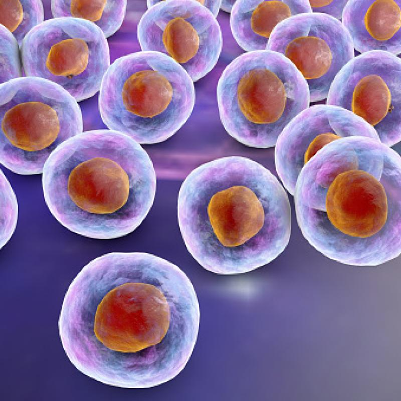 Japanese pharma company Takeda acquires Flanders-based stem cell expert TiGenix.