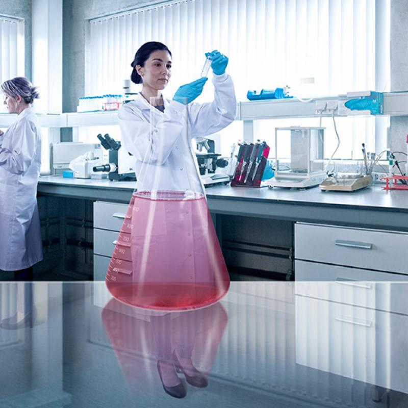 Biotech Flanders Accelerates