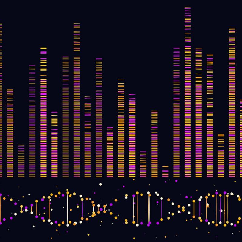 Genome data