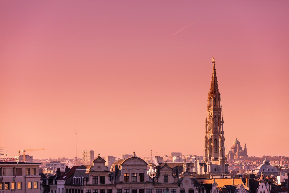The presence of European institutions is the main driver for expats to move to Brussels