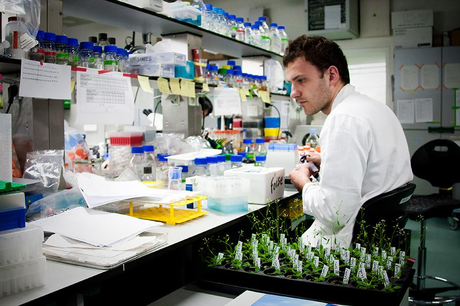 Plant technology: researcher in lab at VIB